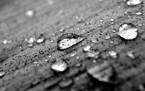 Fatwa Ulama: Apakah Najis Yang Sedikit Itu Dimaafkan?