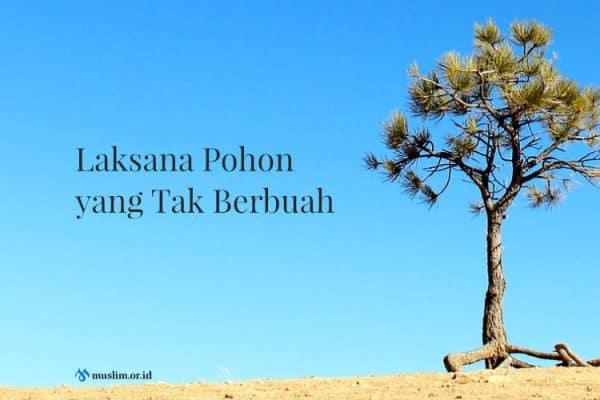 Laksana Pohon yang Tak Berbuah