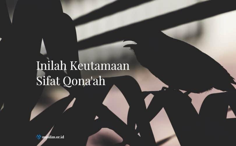 Keutamaan Sifat Qona'ah