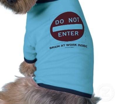 Fatwa Ulama: Jika Anjing Menjilat Selain Bejana, Apakah Dicuci 7 Kali?