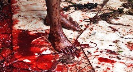 ritual berdarah syiah asyura