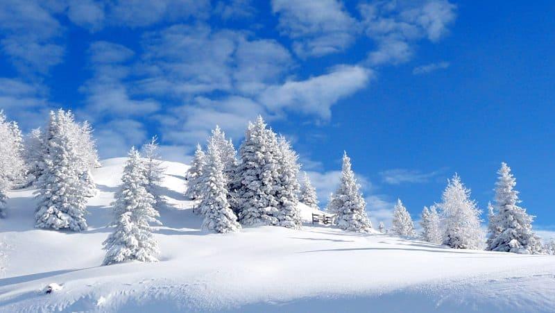 ucapan selamat natal menurut madzhab syafi i muslim or id