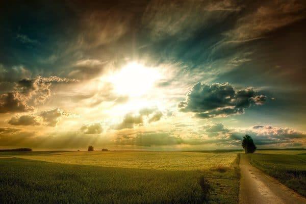 Apakah Malaikat Israfil Bertugas Meniup Sangkakala pada Hari Kiamat? (2)