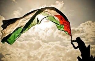 Zakat untuk Palestina