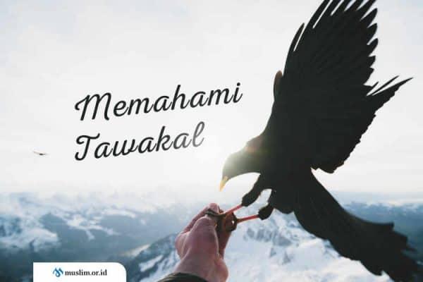 Aqidah, cara tawakal, ikhtiar, pengertian tawakal, Tauhid, Tawakal, ahlussunnah